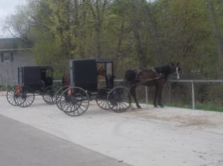 Amish HorseandCart